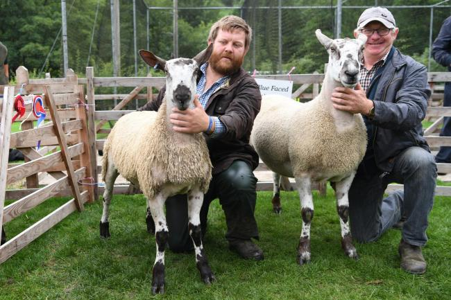 Allendale Show. Stephen Ridley holding the male leicester champion and father Melvin Ridley with the female, overall leicester champion and overall interbreed champion at Allendale Show. Photo: HX351825. KATE BUCKINGHAM..