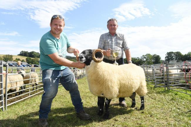 Stewie and Willie Wetherson with their winning Blackface shearling tup.