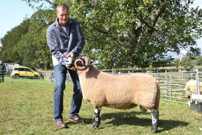 Steven Mackay, of Otterburn, with the Scotch Blackface shearling tup, named overall champion at Bellingham Show.                                                              Photo: HX371929