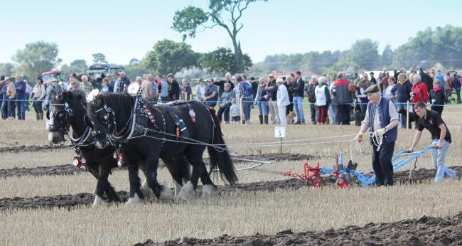 Mindrum will play host to the 70th annual British National Ploughing Championships.