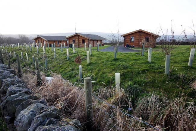 The existing lodges, where the applicant proposes to build 10 camping pods and a clubhouse. Photo: PAUL NORRIS