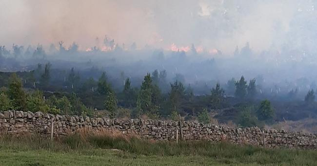 A large forest fire has broken out near Haydon Bridge