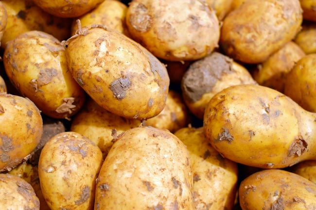 Tesco reveal why they are going to sell unwashed potatoes. Picture: Pixabay