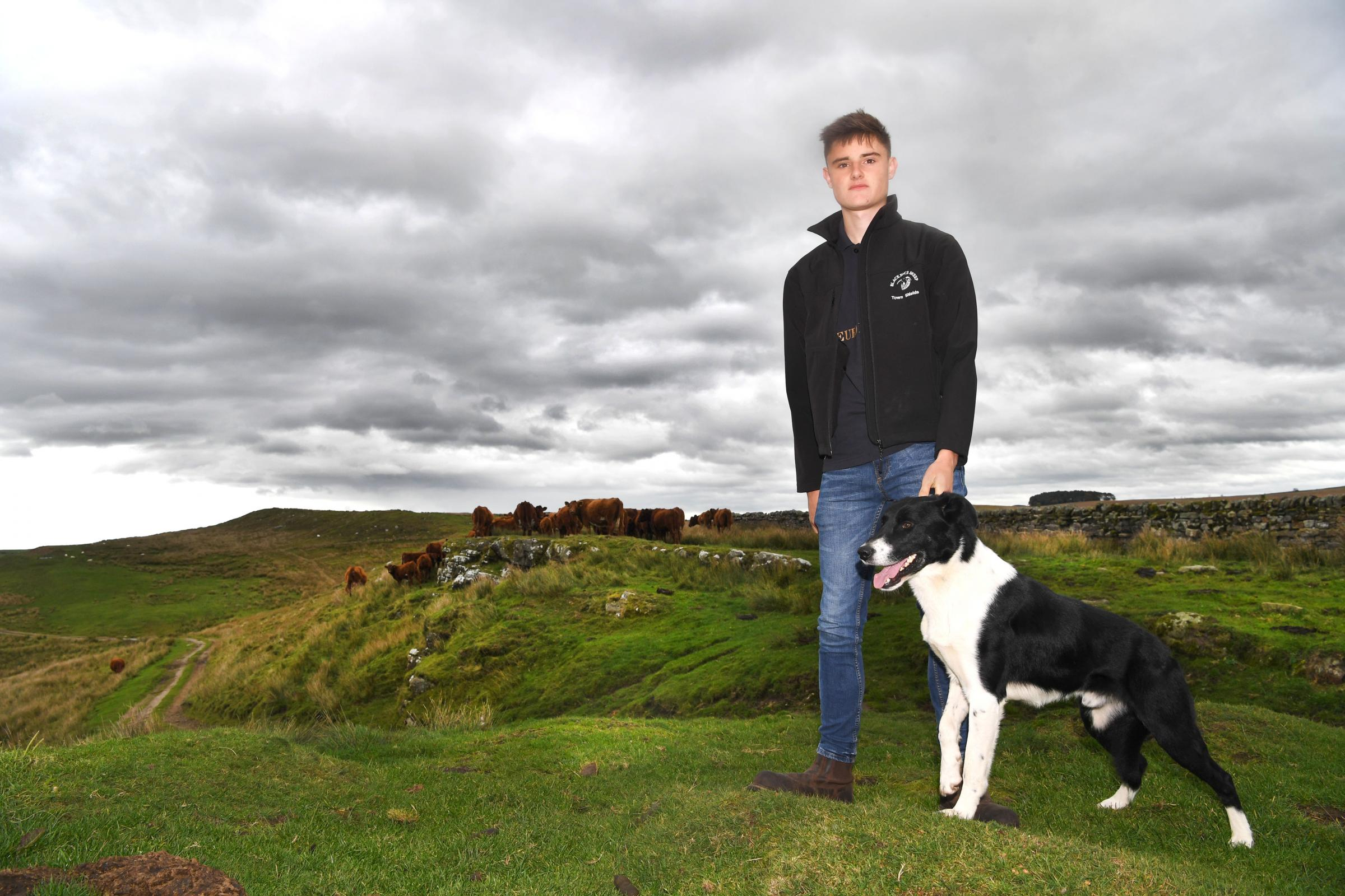 Young farmer David Robson from Bellingham YFC with his trusty Collie, Bob. Photo: HX431823