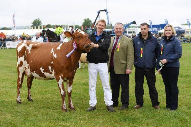 The reserve champion of champions at last year's Northumberland County Show, Richard Baynes with sponsors Jeff Hubbuck, Phil Hubbuck and Sarah Spark.      Photo: HX2217124