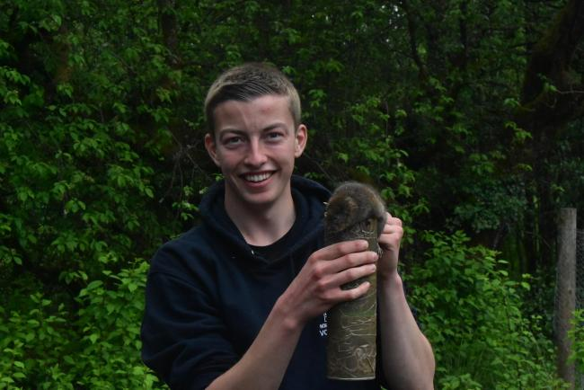 University student, Joel Ireland, is ready to release his first water vole. 		        Photo: KELLY HOLLING
